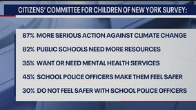 Survey: Young voters in NYC focused on climate change, public schools