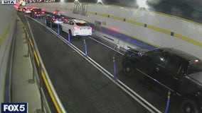 VIDEO: Dog dashes through Queens–Midtown Tunnel, dodging cars and cops