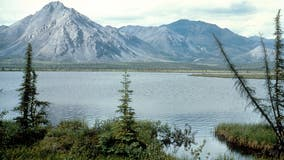 Biden admin to suspend oil, gas leases in Alaska's Arctic National Wildlife Refuge