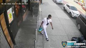 Elderly woman carjacked in Brooklyn - with her dog still inside car