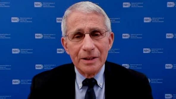 Delta coronavirus variant doubling biweekly, now 20% of samples, Fauci says