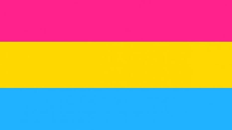 pansexual-flag.jpeg