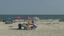 More sharks spotted at Nassau County beaches