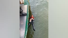 Man rescued after jumping into Hudson River to rescue his dog