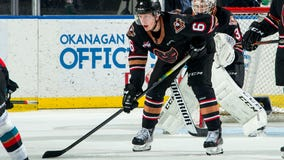 NHL prospect comes out as gay