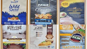 Several dog food products recalled after harmful substance found
