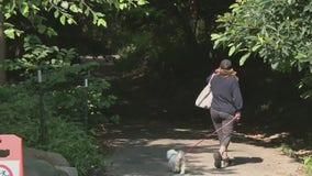 Creep attacks 3 women in an hour in same Manhattan park