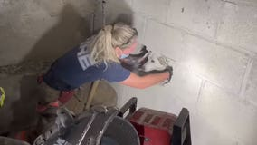 Firefighters rescue dog trapped between concrete walls for days