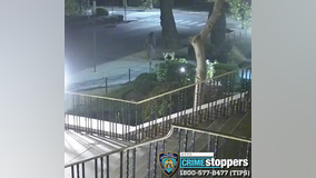 Vandal smashes statues outside of Queens church