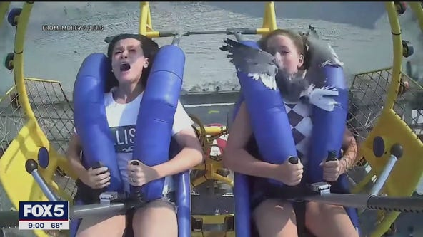 Girl hit by seagull on ride