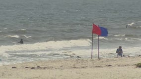 Another shark spotted near beach in Nassau County