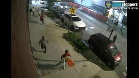 Group chases, brutally attack 2 men leaving bar