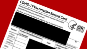 DA: Online 'entrepreneur' sold forged vaccine cards to health-care workers