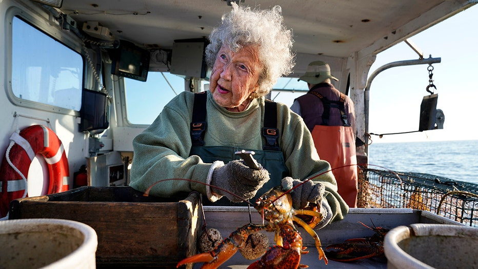 An eldery woman with white hair handles a love lobster on a boat; she wears a sweatshirt, overalls and gloves
