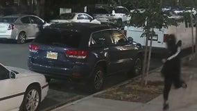 2 teens shot inside Crown Heights playground