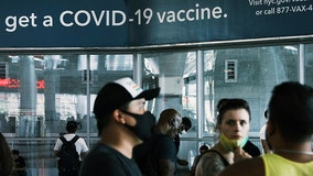 Spike in COVID cases caused by human behavior not vaccine efficacy: Study