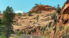 Man in custody after chase, shootings near Zion National Park