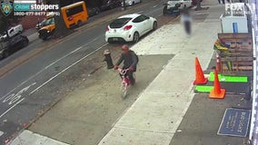 Thief on little pink bike with butterflies robs 10-year-old girl