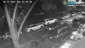 $120,000 jewelry stolen in Bronx carjacking