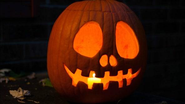 Pumpkin shortage hits the US ahead of Halloween
