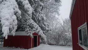 January 2018 winter storm: View and submit pictures of snow in your neighborhood