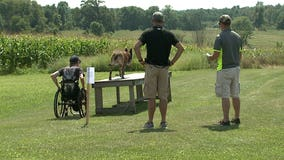 24/7 Battle Buddies Summer Games offers chance for veterans to compete with their dogs