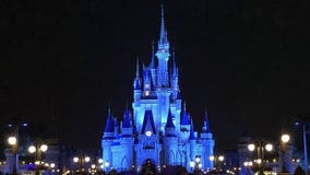 Disney lights up Cinderella's Castle in blue to honor 'brave health care providers helping so many'