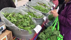 New ways to buy and eat local