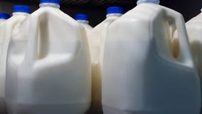 'We are going to buy that milk:' New program sends Wisconsin farmers' dairy to food pantries