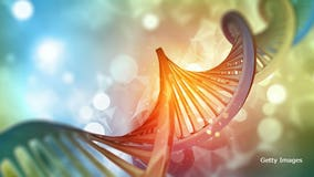 DNA-matched cancer treatment could increase survival rates as much as 6-fold