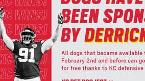 Chiefs player celebrates Super Bowl win by paying adoption fees for shelter dogs