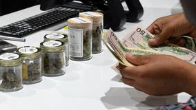 Company hiring marijuana tester, critic for $3,000 a month