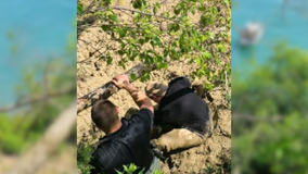 Racine County sheriff's deputies rescue man from cliff