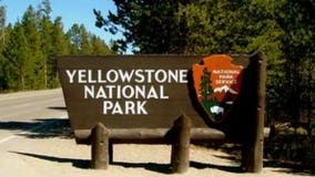 3-year-old falls into Yellowstone National Park thermal feature
