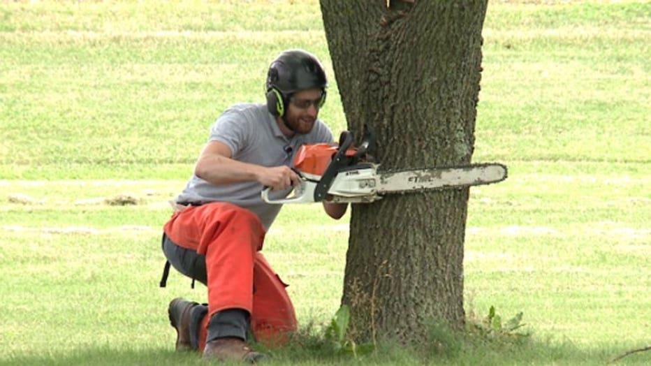 Arborist pre-apprentice program at MATC