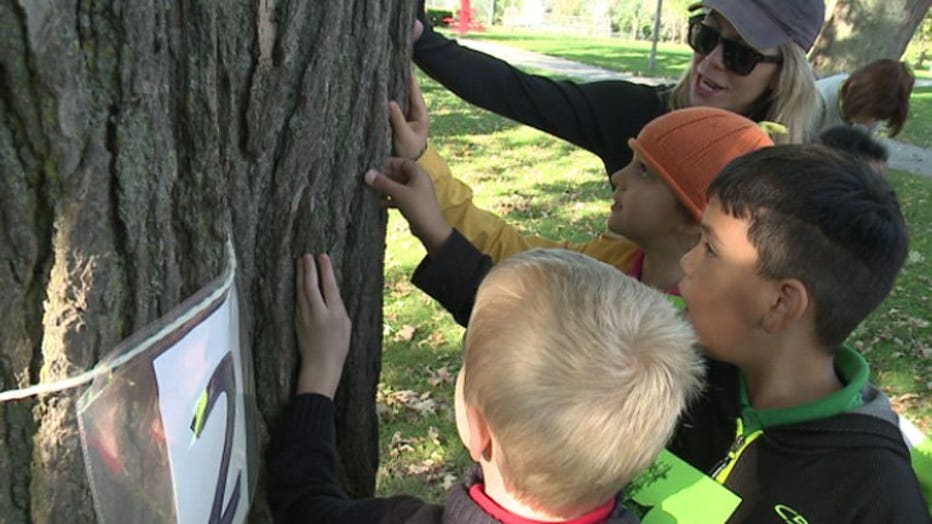 21st Annual Tree Day