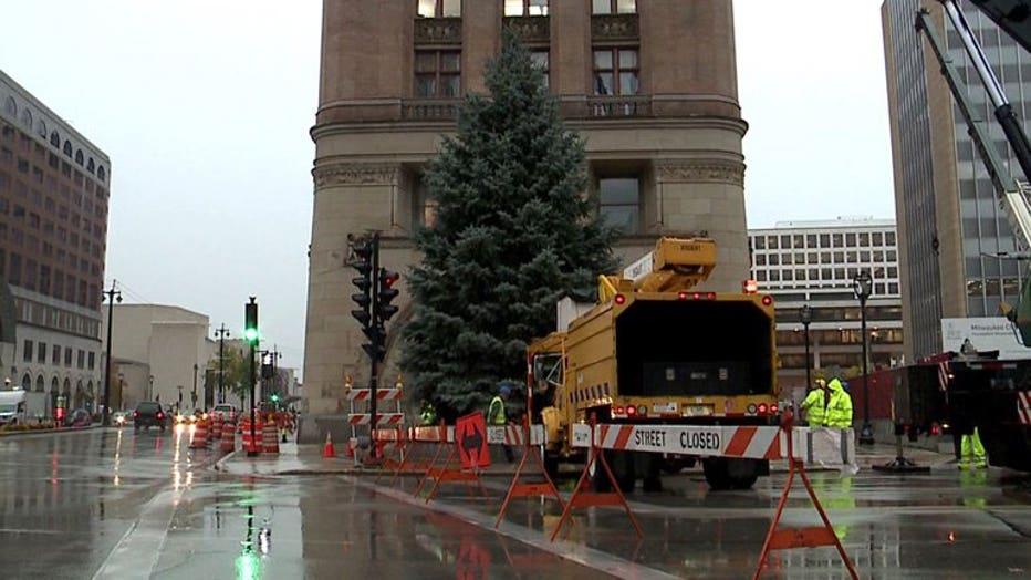 Milwaukee Christmas Tree harvested