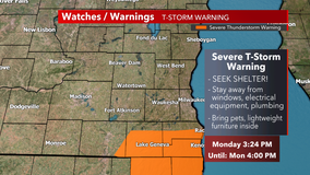 Severe T-storm warning for parts of Kenosha, Racine counties until 4:30 p.m.
