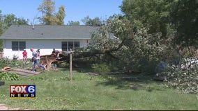 Cleanup underway after storms roll through Kenosha County