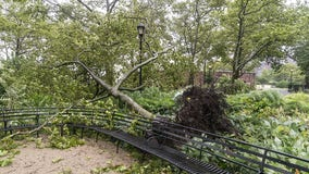 Isaias leaves at least 8 dead and millions without power as it rips through East Coast