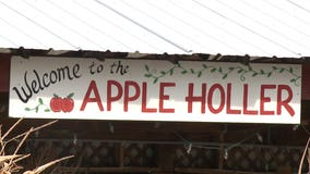 Apple picking at Apple Holler offers 'the ultimate opportunity' to practice social distancing