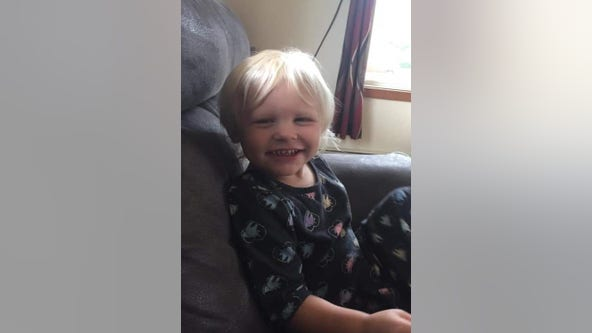 Have you seen Abigail Ladwig? 3-year-old reported missing in northern Wisconsin