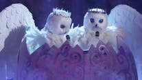 'The Masked Singer' season 4 takes flight with the Snow Owls