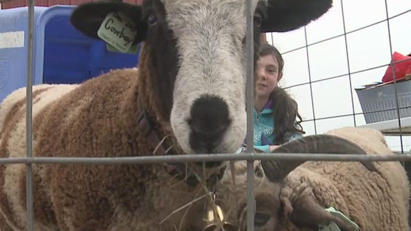 Sheboygan Falls farm hosts 1st open house
