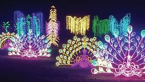 Winter Wonders drive-thru holiday lights show returns to Boerner