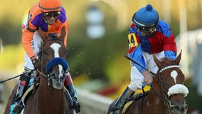 Swiss Skydiver beats Authentic to win Preakness