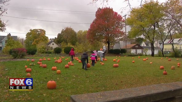 Milwaukee free pumpkin giveaway