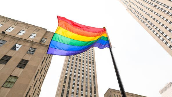 NYPD officers react to ban from New York City Pride parade: 'Shameful'