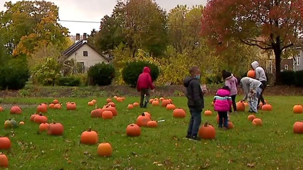 Milwaukee pumpkin giveaway offers free Halloween fun