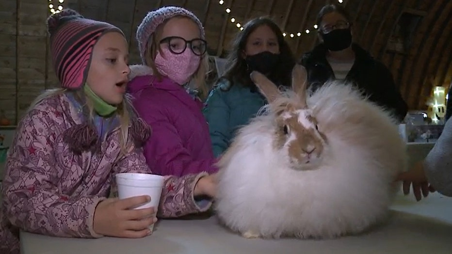 Kids meet Caramel Apple the bunny